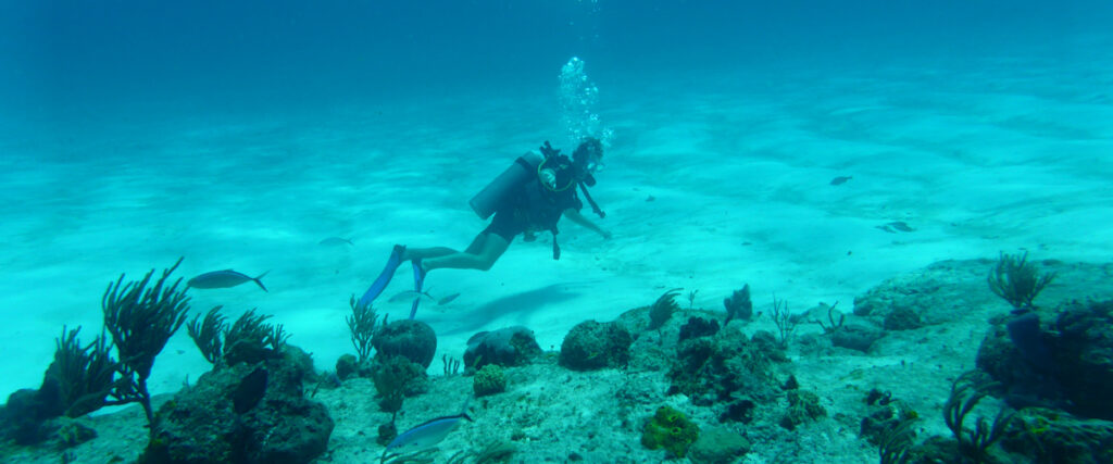 Een duiker verkent de prachtige onderwaterwereld van Bonaire