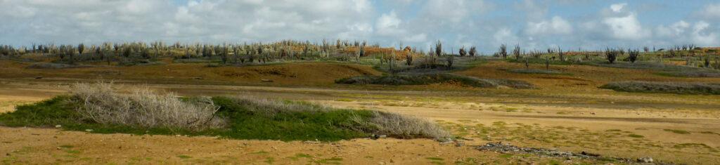 Heuvelachtig landschap Bonaire