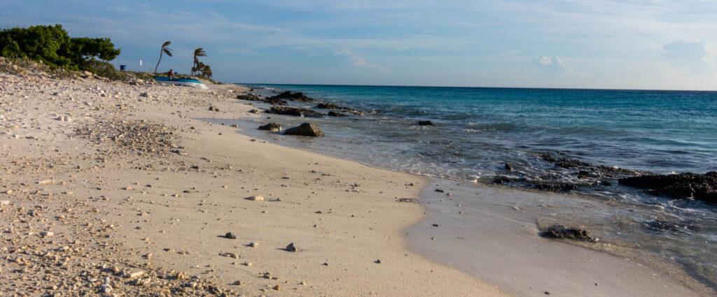 De kust met zandstrand en palmen op Bonaire