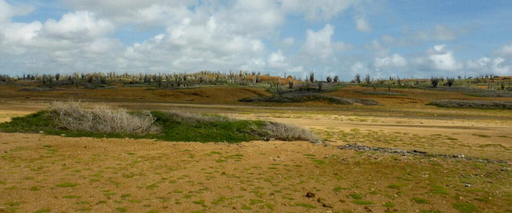 Landschap Bonaire