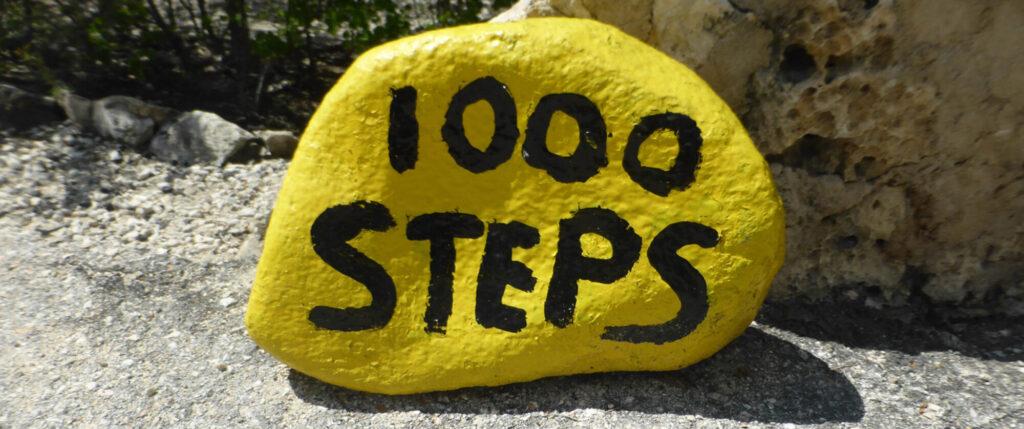 Duiken en snorkelen Bonaie - 1000 Steps