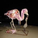 Vogel van aangespoeld afval op Bonaire